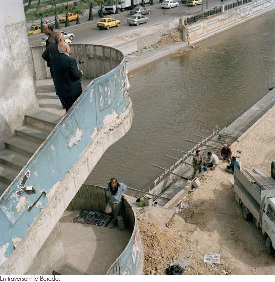 Damas2010 06